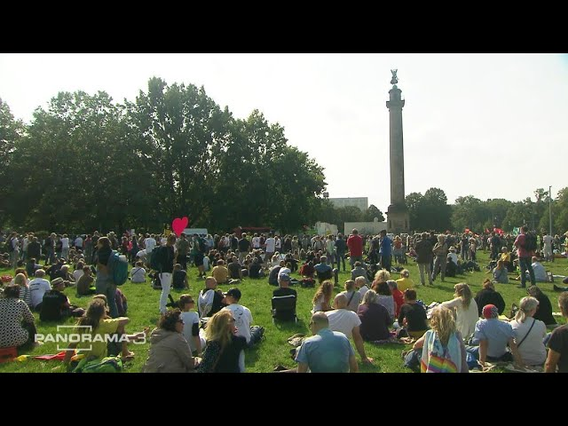 Corona-Demos: Was eint die Protestierenden? | Panorama 3 | NDR