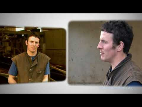 Bryan Daniels - Farmer - Dairy
