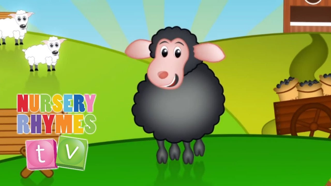 Baa Black Sheep Nursery Rhymes Tv Toddler Kindergarten Preschool Baby Songs You