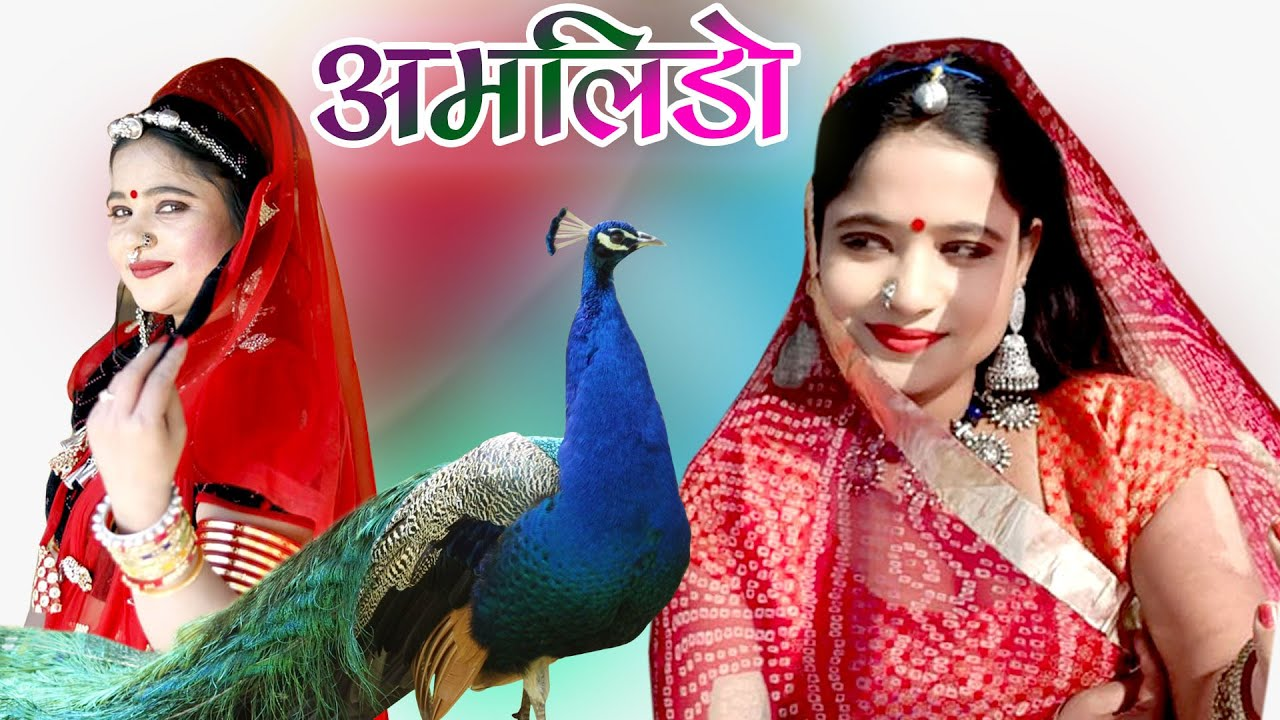 राजस्थानी DJ पर धूम मचा देने वाला सांग || मेरा यार दिलदार बड़ो सोनो #Amlido #अमलीडो  #Ranirangili