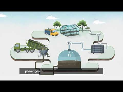 Explainer Video  Enesys Enhanced Greenhousing Captioned