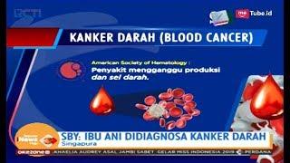 Waspada Kanker Darah - Insight with Desi Anwar.