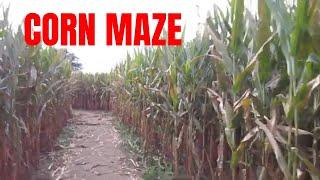 Corn Maze Cates Farm