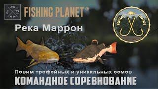 Fishing Planet Река Маррон Спонсируемое командное соревнование Ловим сомов