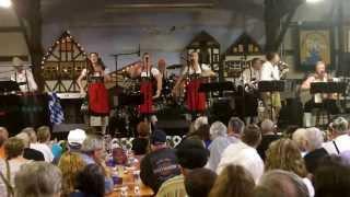 Oompah Polka Style (Gangnam Style Parody) - Z Musikmakers