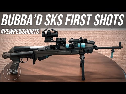 Bubba'd SKS Beginner's Luck 😅 [Pew Pew Shorts]