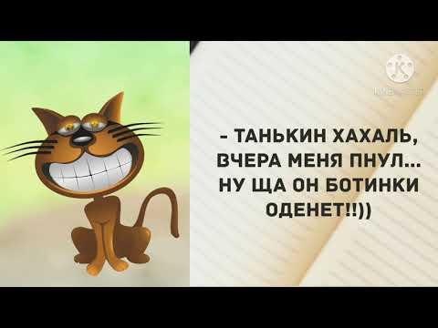 - Ой, Фимочка Вам уже а сорок.. Прикольные анекдоты дня! Одесский юмор - Видео онлайн