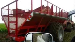 Gouw Sugar Beet Cart