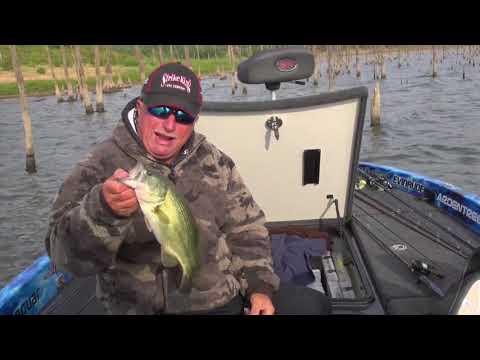 10-Bass Battles With Denny & Chad Brauer, Truman Reservoir