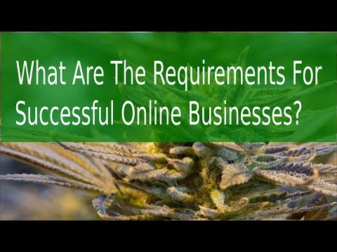 What Are The Requirements For Successful Online Businesses?