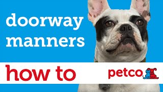 How To Calm Your Dog Before Walks (petco)