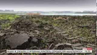 Po polu... mają pływać kajakiem? (Puls Polski TVP Info, 22.11.2013)