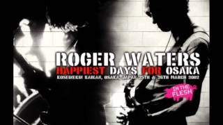 Roger Waters: Get Your Filthy Hands Off My Desert/Southampton Dock (2002)