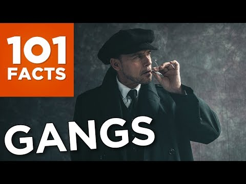 101 Facts About Gangs
