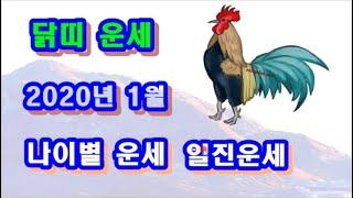 1월 닭띠 운세 - 2020년 1월 기해년 정축월 닭띠 일진 사주 운세보기