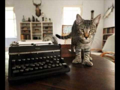 Hemingway Cats - Freedom Feens Podcast #81