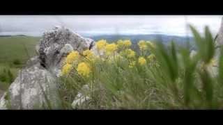 Jadovnik ® 2013 Teaser