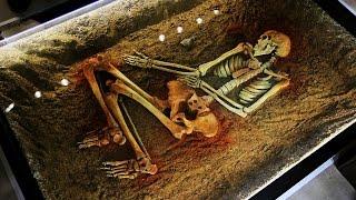 В ХНУ имени В.Н. Каразина прошло открытие археологического музея cмотреть видео онлайн бесплатно в высоком качестве - HDVIDEO