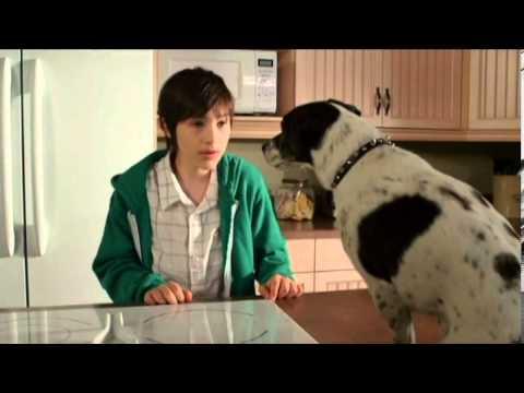 Vampire Dog 2012 Movie