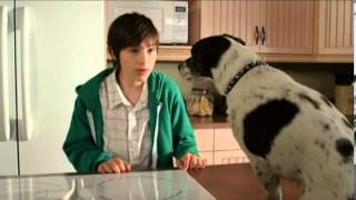 Vampire Dog 2012 Movie Trailer