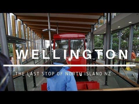 24 Hours in Wellington! | Budget Travel | Road Trip NZ