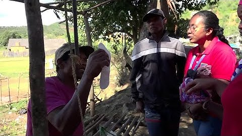 Avoir ses règles à Madagascar : un tabou qui freine l'émancipation des femmes