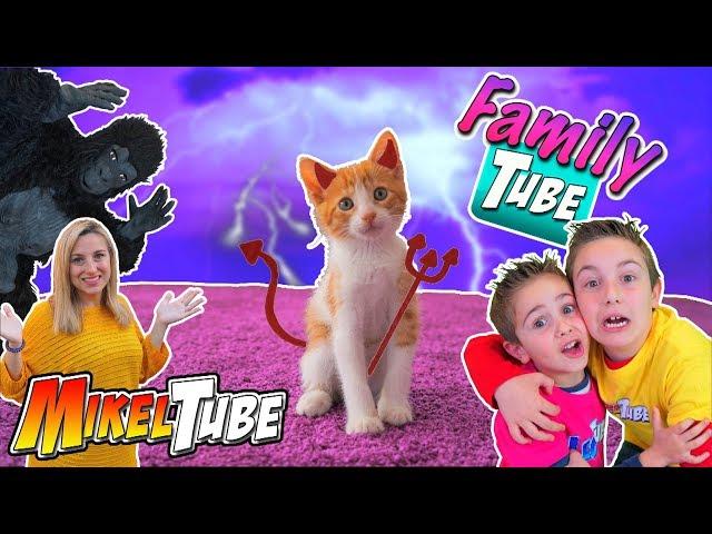 FamilyTube #12 Este gatito es un Demonio