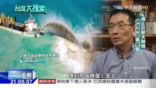 2016.05.07台灣大搜索/驚人!巨獸「天鯨號」吹沙造島 南海礁岩一眠大一寸