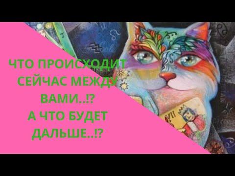 👩❤👨Что происходит  сейчас между Вами..!? Развитие на ближайшее будущее..!?👩❤👨РАСКЛАД онлайн