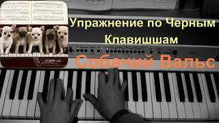 Упражнение по черным клавишам или Собачий Вальс-))