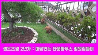 (셀프조경 2년차) 마당있는 전원형 타운하우스 정원집들이 (정원만들기)