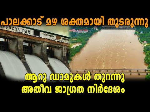 പാലക്കാട് മഴ ശക്തമായി തുടരുന്നു | Palakkad Flood | Kerala Floods 2018 | Oneindia Malayalam