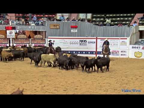 Capt Sparrowhawk 2017 NCHA Super Stakes Classic Amateur Finals