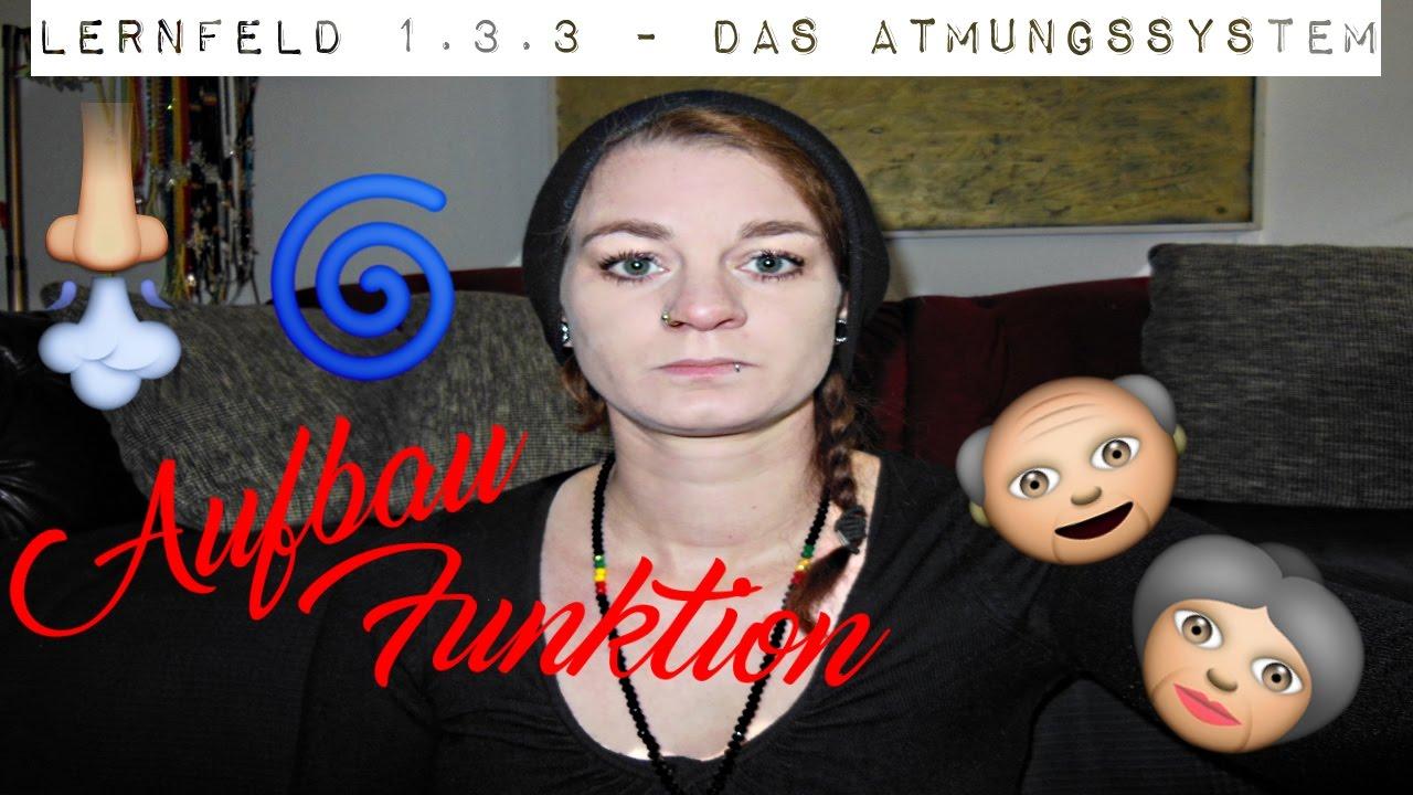 Lernfeld 1.3.3 - Das Atmungssystem - YouTube