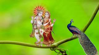 Radha Krishna PC wallpaper