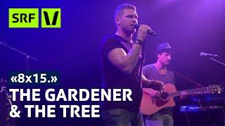 The Gardener & The Tree live im Kammgarn Schaffhausen | 8x15 | SRF Virus