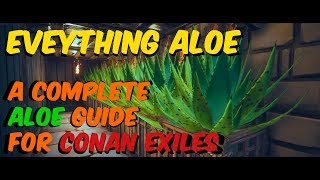 Complete ALOE GUIDE! Everything you can know about aloe in Conan Exiles!