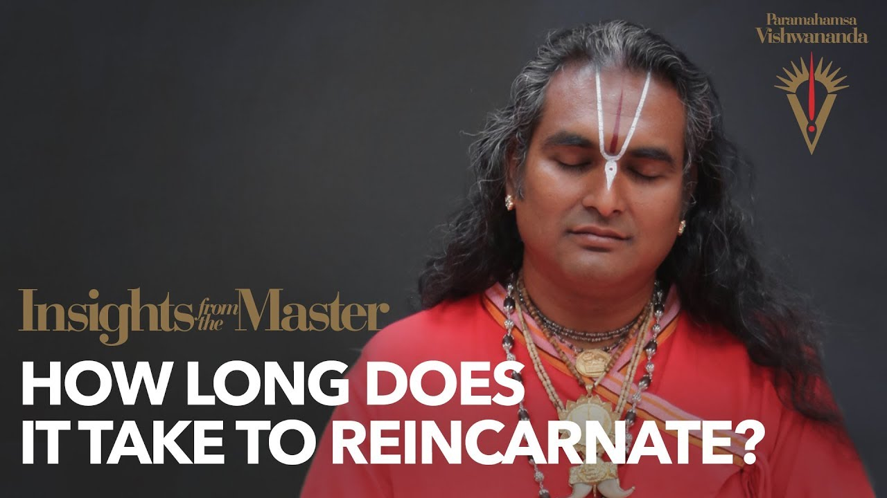 How long does it take to reincarnate