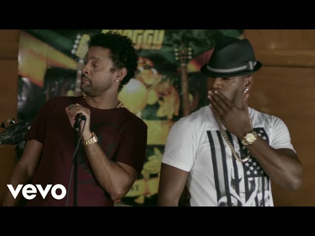 Shaggy - You Girl  ft. Ne-Yo (Official Music Video)