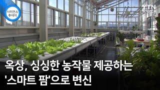 옥상, 싱싱한 농작물 제공하는 '스마트 팜…