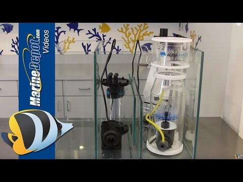 How to Build a Custom Sump for Your Reef Aquarium