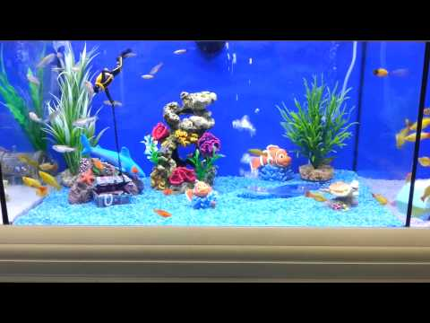 Brilliant Fish Tank For Kids