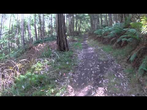 Mount Buller MTB ride Delatite River Trail via Gang Gangs (Last day 28 Apr 2013)