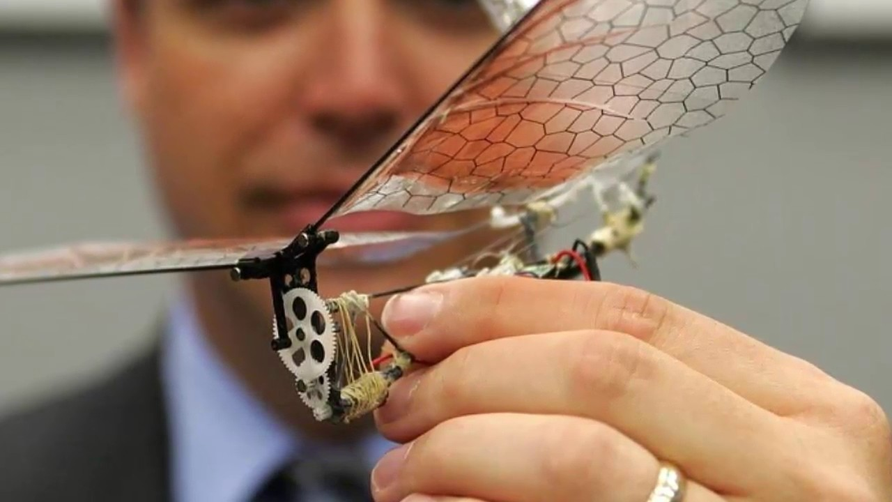 Top 10 Smallest Sized Military Drones In The World 2017