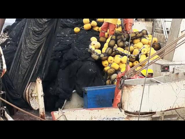 """Tripulación de la lancha JADRANKA B sueltan las """"culebras de cuba"""" y logran embolsar el pescado"""