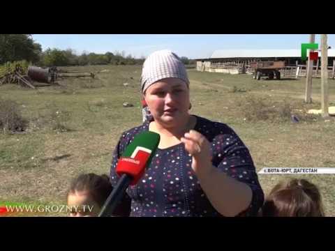 Семья Абукаевых из Дагестана поблагодарила Рамзана Кадырова за помощь