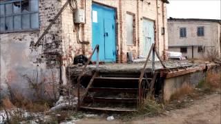 """""""Концлагерь"""" для собак  в Нижнем Новгороде"""