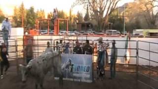 Rodeo de Santa Isabel Chih 2010 jineteo de toros www.caballo.tv
