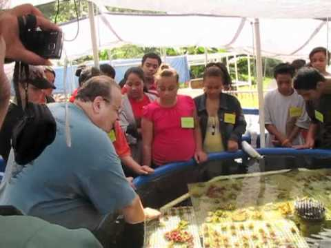 Environmental Education in American Samoa