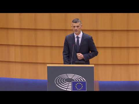 Valter Flego 21 Jan 2021 plenary speech on earthquakes in Croatia